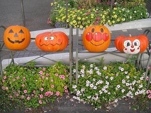 かぼちゃ4.jpg